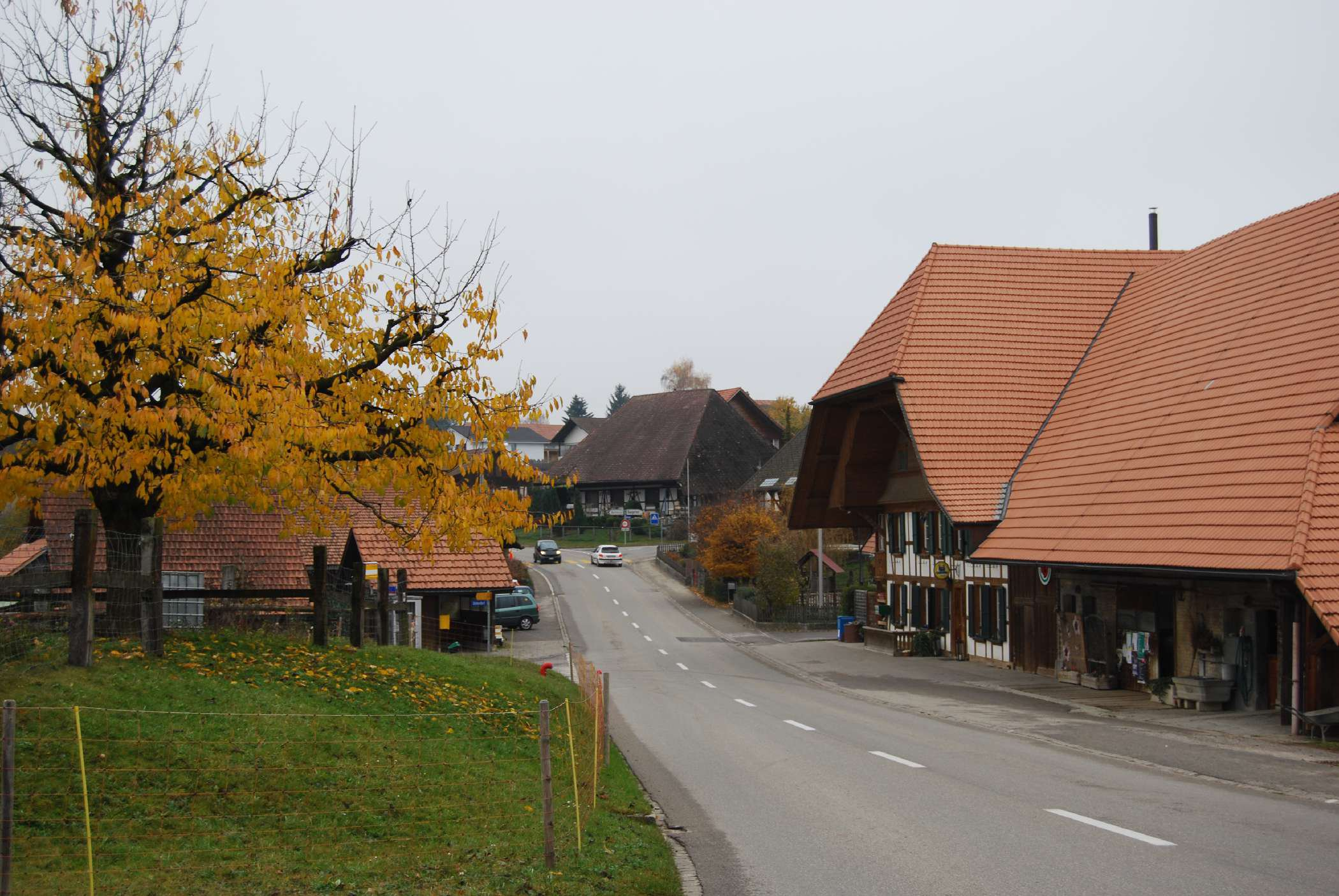 Zuzwil (BE)